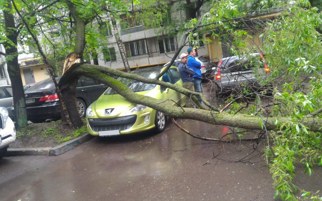 5 conseils pour votre assurance auto